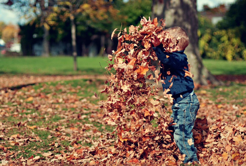 Barn med löv