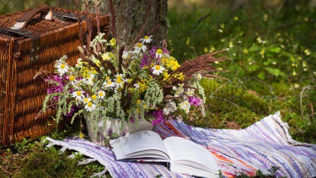 sommarkvällar picknick filt blommor sommar korg