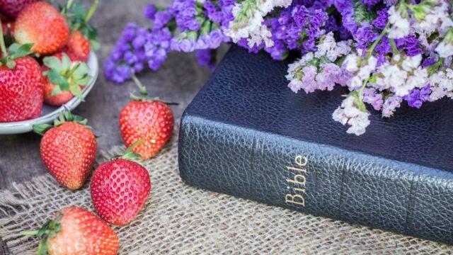 jordgubbar bibel sommar blommor