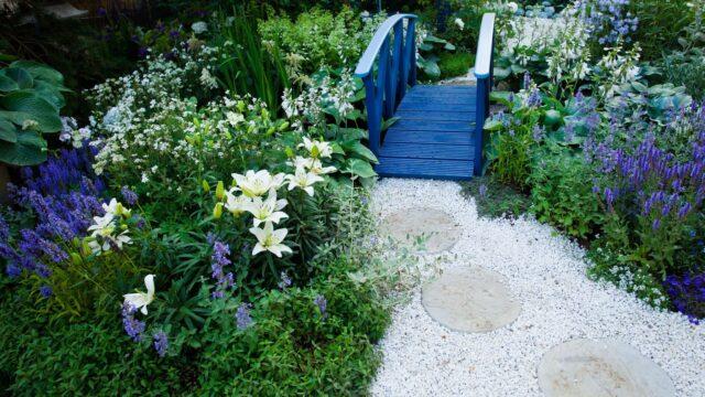bibelstudium trädgård ro själ blommor blå liljor
