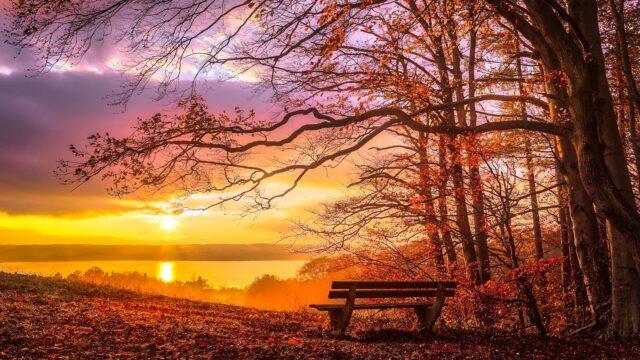november höst soluppgång solnedgång dimma